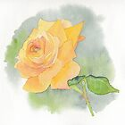 Golden Rose by Sue Brown