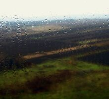 fields through a chapel window on a rainy day. by Alexandra Brovco