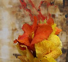 ARTFUL FLOWERS - CANNA LILY INSTALLATION IV by GeeGeeW