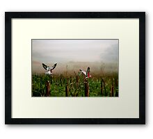 Where are the grapes? Framed Print