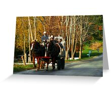 Drivers Ed... Amish Style (best when viewed large) Greeting Card