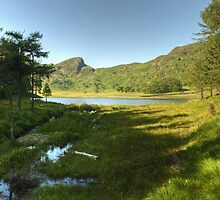 Blea Tarn On An Afternoon In July by VoluntaryRanger