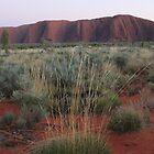 Sunrise at Uluru, NT by Kymbo