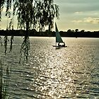 Sailing ~ Lake Reily by kodakcameragirl