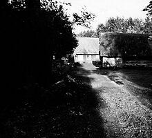 Black. White. Light. by tutulele