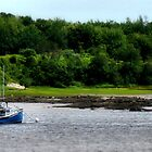 Boats in Mooring by Carrie Blackwood