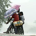 On a rainy day! by debjyotinayak