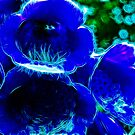 Fractal Flower Blue by Den McKervey