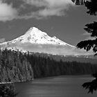 MT. Hood in Black and White by Jennifer Hulbert-Hortman