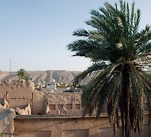 View from the rooftop - iran by mojgan