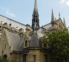 Notre Dame IV by shane22