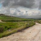 Benighted Dartmoor by DonDavisUK