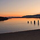 Waikanae Estuary by Nicolette Gregory
