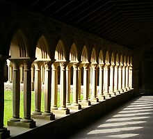 Cloisters Iona Abbey Scotland by John Butterfield