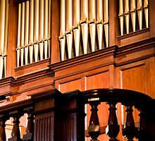0134  The Organ Pipes by Pitt Street  Uniting Church, Sydney