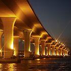 Roosevelt Bridge by nancyb926