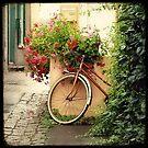 La bicyclette aux Géraniums by Marc Loret