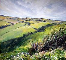 scottish borders with daisies by christine vandenhaute