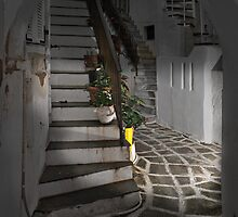 Two Staircases and an Alley by Peter Hammer