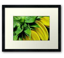 Make-A-Wish Sunflower Framed Print