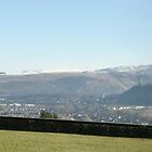 Stirling castle Scotland panorama looking towards the Ochils by John Butterfield