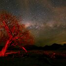 The Red and the Blue - Canberra Ranges by Barry Armstead