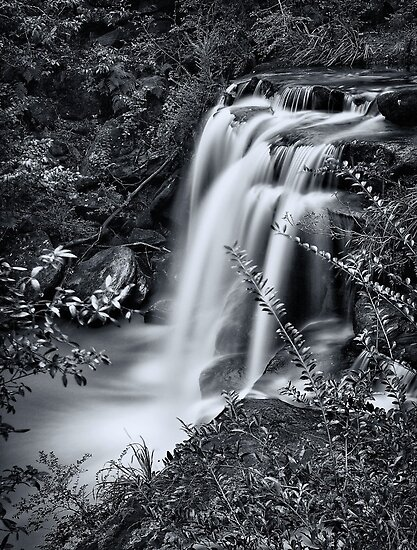Sydney waterfalls - Hunts Creek #4 by vilaro Images