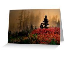 Bohema Saddle Fall Colors Greeting Card