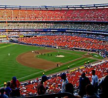 Shea Stadium - The Final Season by michael6076