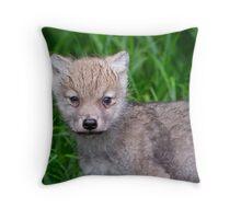 Arctic Wolf Pup Portrait  Throw Pillow