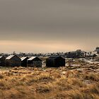 Fishermans huts and holiday chalets, Winterton, Norfolk, England by Alex Drozd