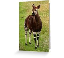I have a little Identity Crisis! Greeting Card