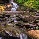 Bridesmaid Falls at Bushkill by Michael Mill