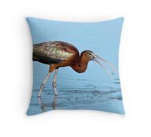 Glossy Ibis Throw Pillow
