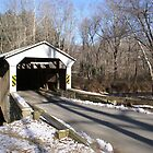 Linton Stevens Covered Bridge by enyaw