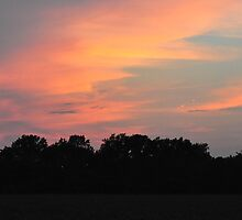Indiana Sunset 7/27/11 by mltrue