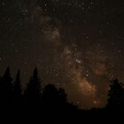 Summer Milky Way - Sagittarius Region by Bill McMullen