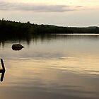 Golden Pond by Tom Allen
