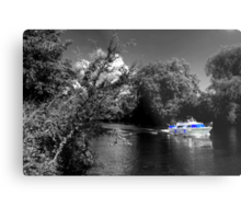 Messin about on the river Metal Print