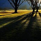Long Shadows by Cyn  Valentine