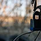 Rural Security by BacktrailPhoto