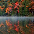 Reflection of Autumn by Cameron B