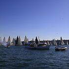 Race Start Sydney-Southport by Noel Elliot