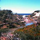Eli Creek by georgieboy98