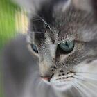 Portrait of Lilo by leapdaybride