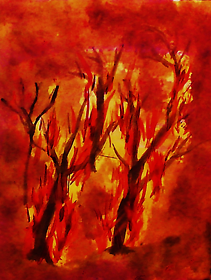 Fire!! Natural Disasters, for Series, Watercolor by Anna  Lewis