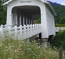 Grave Creek Covered Bridge by 2HivelysArt