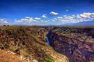 Rio Grande Gorge Bridge by njordphoto