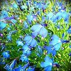 ...something blue by Tibbs