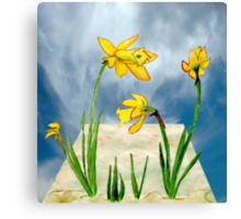 Daffodils Out of Bounds  Canvas Print